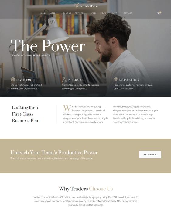 wordpress themes finance websites