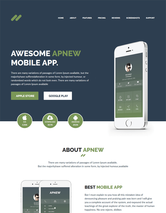 wordpress themes promoting apps
