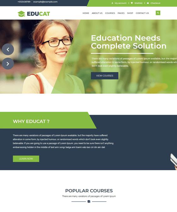 education wordpress themes for schools