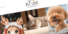 best wordpress themes pets vets feature