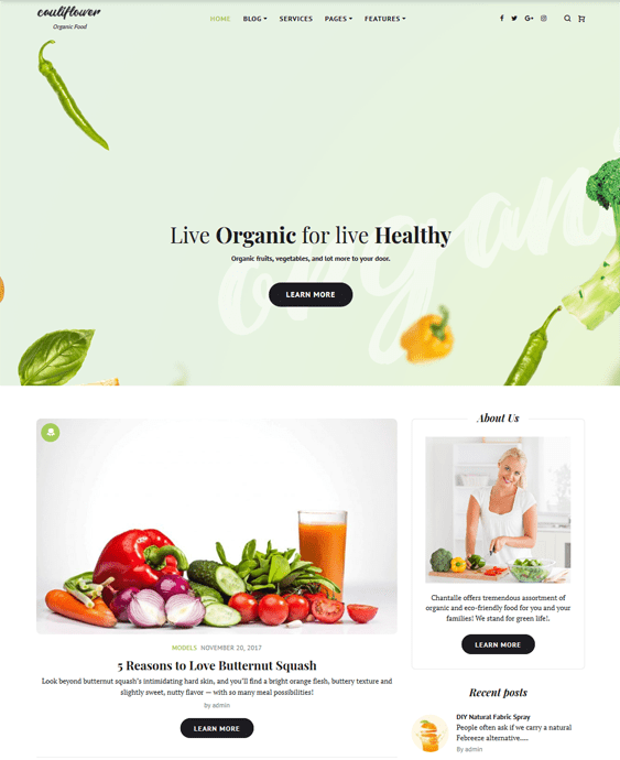 food recipe wordpress themes