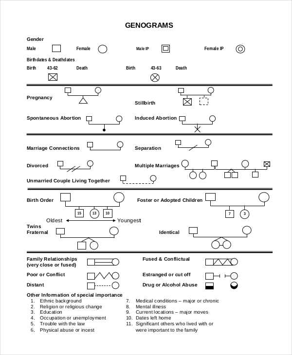 Free Genogram Templates   Family Word Powerpoint  Template Section