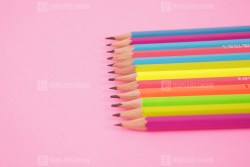 Bunch of pencils on pink background
