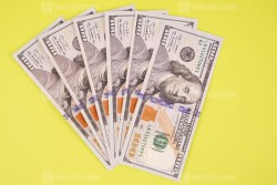 Six hundred us dollars cash