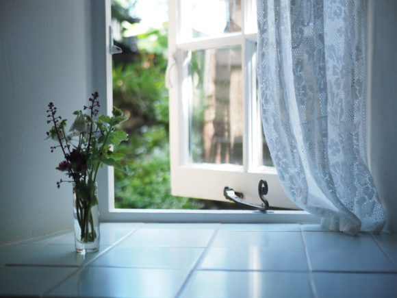 A-glimpse-of-the-fern-garden-laced-with-sweetwoodruff-through-the-bathroom-window