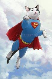 SupercatWeb