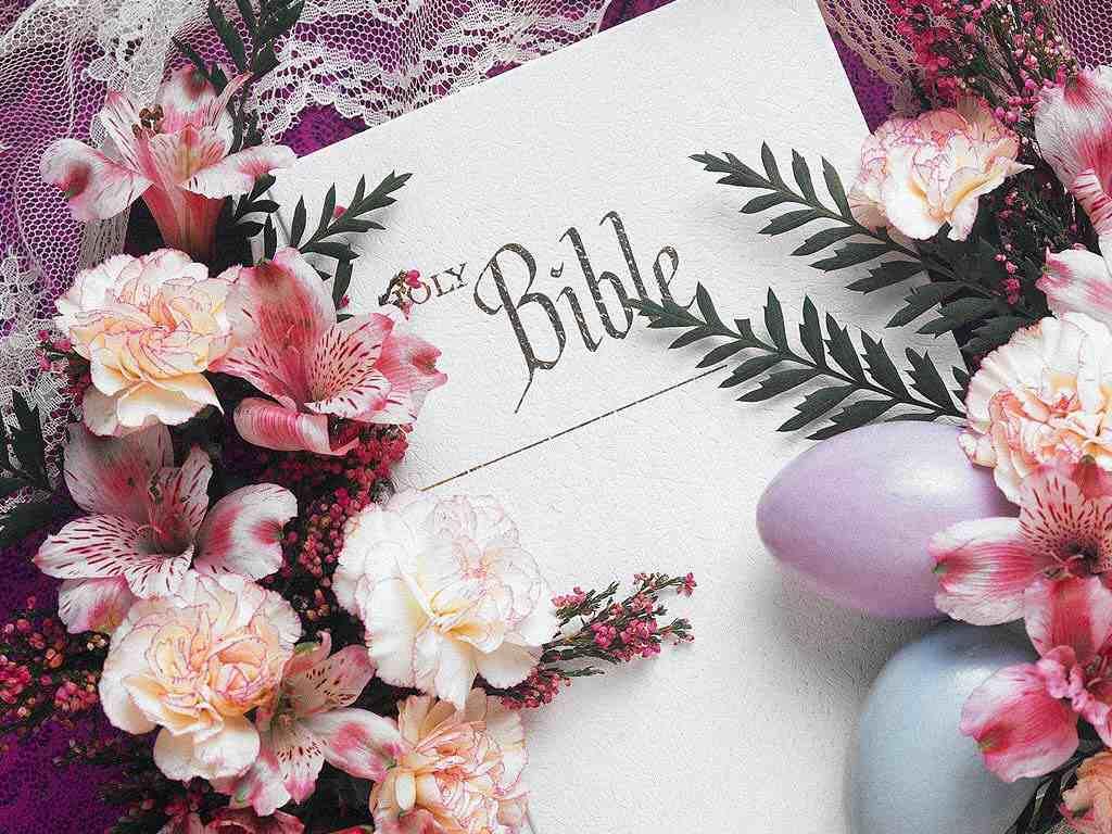 https://i2.wp.com/templeofprayers.org/bibleflowerswallpaper.jpg