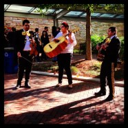 Turner celebrated Uno de Mayo with a mariachi band, Mexican food, and beer in the courtyard on a Thursday afternoon.