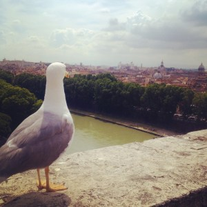 Bird's eye view of Rome
