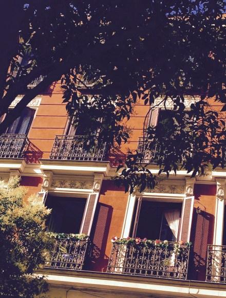 blog-calle 6