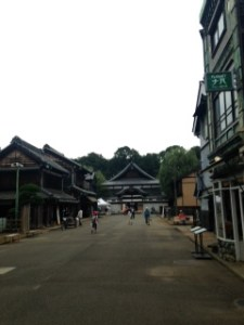 The Edo Open Air Architecture Museum. This is only a small part of it. It was enormous!