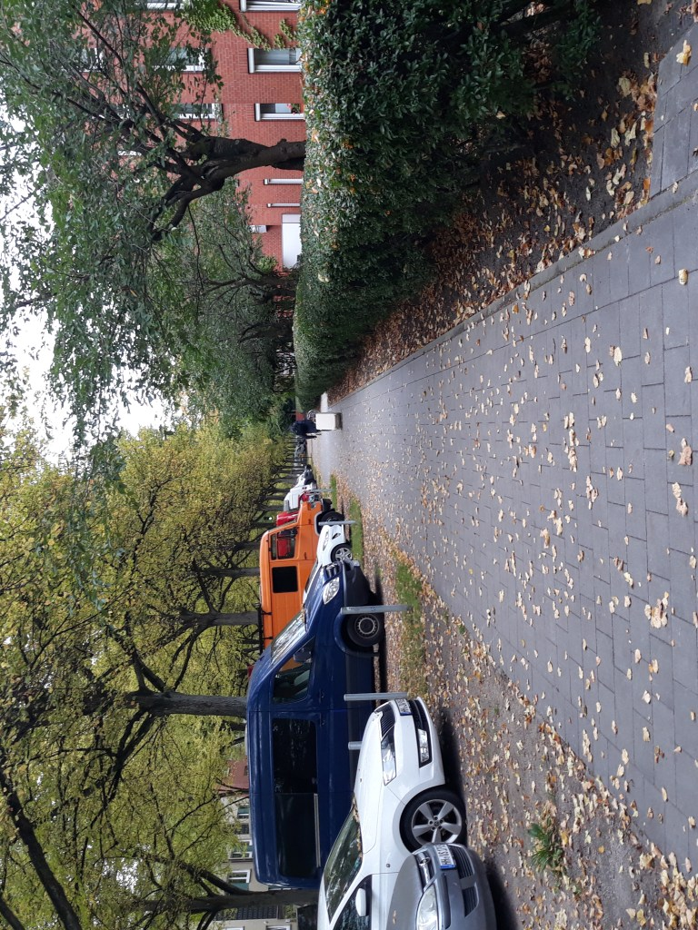 This image features a gray walking path with brown leaves on a fall day. To the left are parked cars and to the right are bushes and brown stone houses.