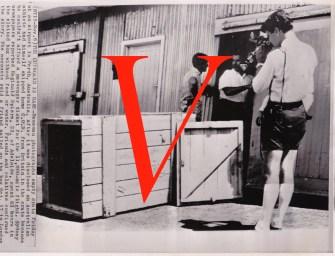 Document V
