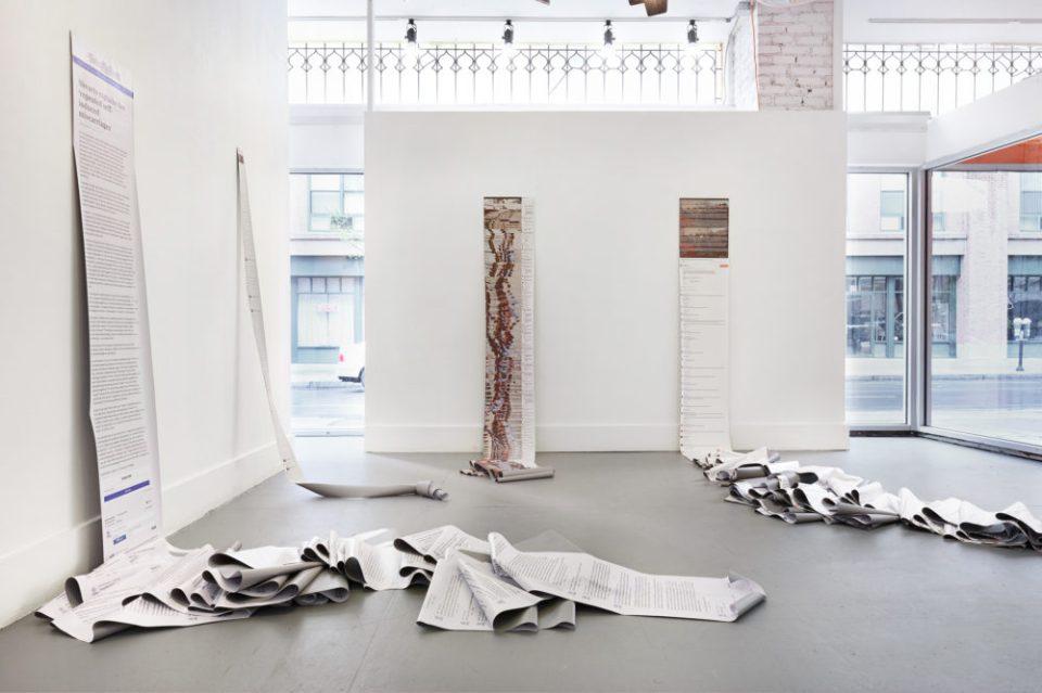 Language at the Edges of Legality: Aliza Shvarts at Artspace