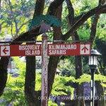 The Animals of Kilimanjaro Safari AK