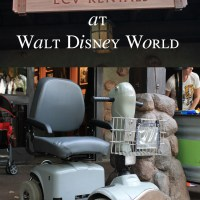 ECV's and Walt Disney World