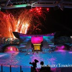 SeaWorld Orlando's All New Shamu's Celebration, Light Up The Night Show