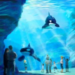 SeaWorld Announces First-Of-Its-Kind Killer Whale Environment