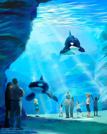 With a planned maximum depth of 50 feet, surface area of nearly 1.5 acres and spanning more than 350 feet in length, the new environment will also have views exceeding 40 feet in height, providing guests with the world's largest underwater viewing experience of killer whales.