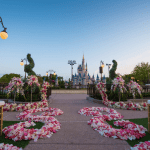 Disney Offering Weddings inside Magic Kingdom