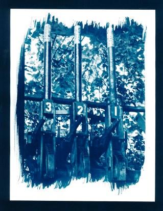 selection cyano gare - 09