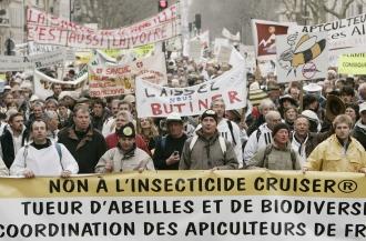 Manifestation à Paris dapiculteurs contre le pesticide Cruiser, en février dernier (Sipa)