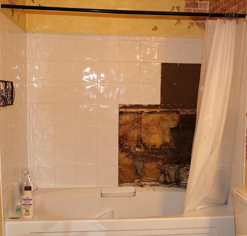 Master Bathroom Dang Shower Tempting Thyme