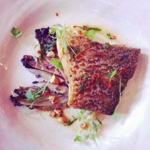 Snapper, braised witlof, toasted almonds & chilli mint oil