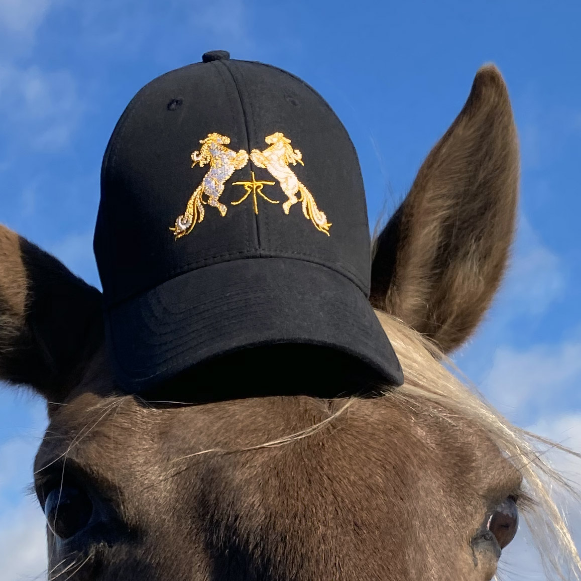 Tempus Renatus hat on horse