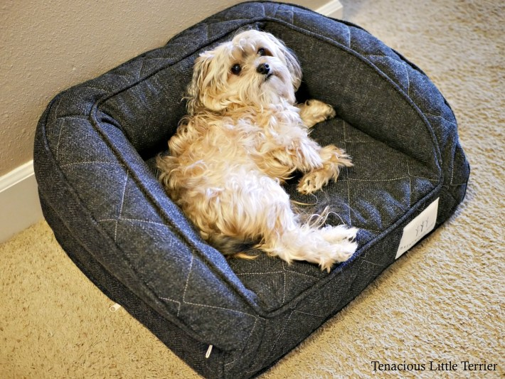 Brentwood Orthopedic Dog Bed 4