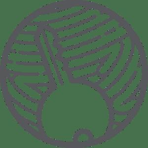 zen-icons-key