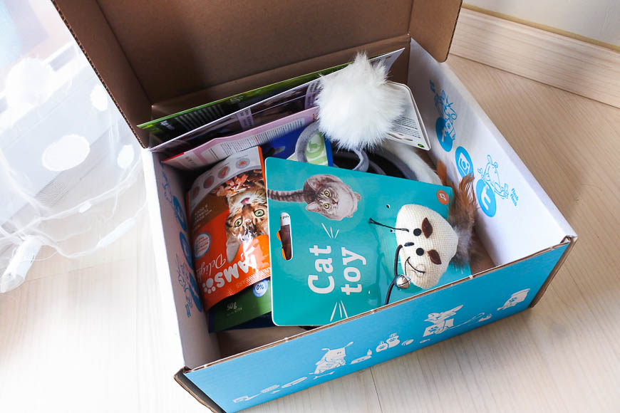 miaou box tendance clémence blog
