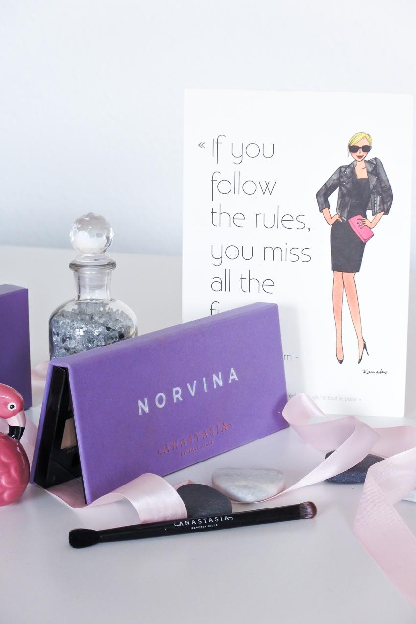 Norvina : la nouvelle palette d'Anastasia Beverly Hills