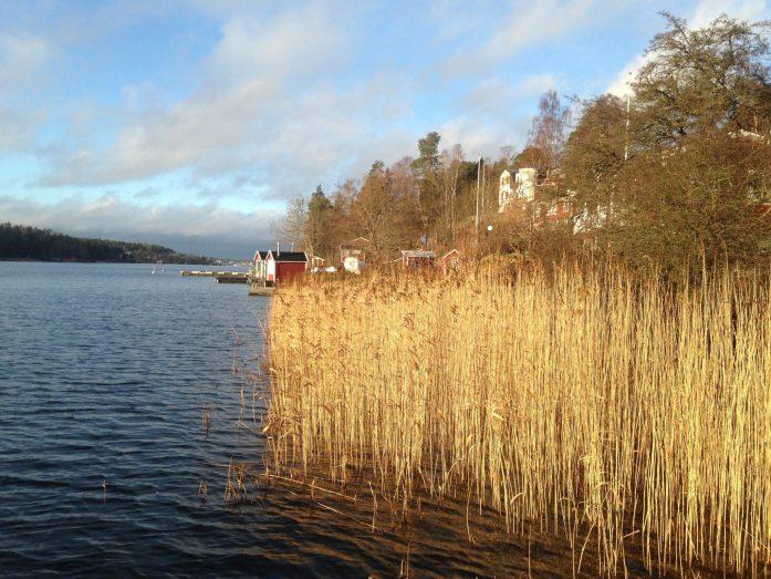 Ile de Rindo Stockholm