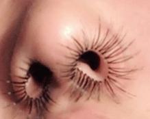 Viral Extensiones de pelos para la nariz, Viral Extensiones de pelos para la nariz, Tendenciasdebelleza, Tendenciasdebelleza
