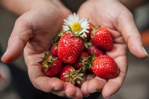 fresas_comida_sana