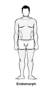 Qué cuerpo tienes Ectomorfo, Mesomorfo o Endomorfo 2