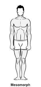 Qué cuerpo tienes Ectomorfo, Mesomorfo o Endomorfo, Qué cuerpo tienes Ectomorfo, Mesomorfo o Endomorfo, Tendenciasdebelleza, Tendenciasdebelleza