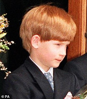 Prince Harry is pictured in 1992