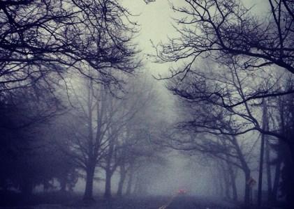 Long Island Fog