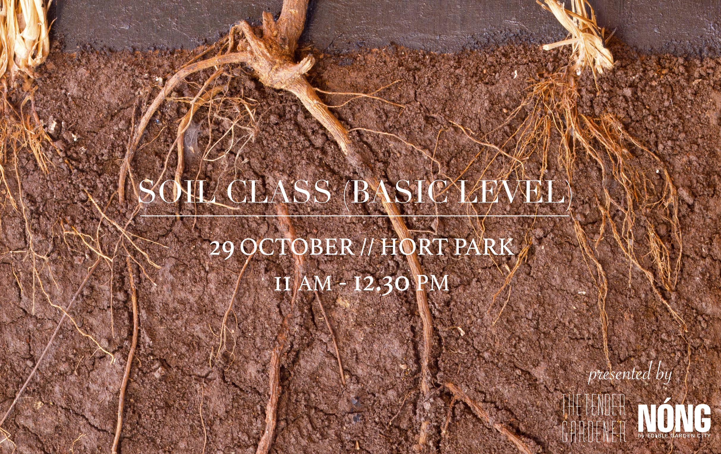 soil workshop singapore hort park