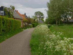 little path Wiersumerschouw