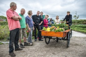 growing veg for and by low income families
