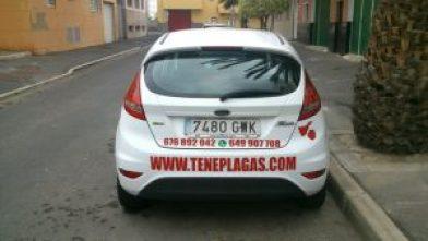 Empresa de control de plagas Fuerteventura