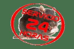 Servicio 24 horas matar rata en Tenerife