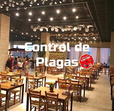 control de plagas para restaurante y bares