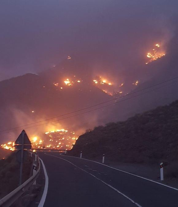 Gran Canaria is burning again