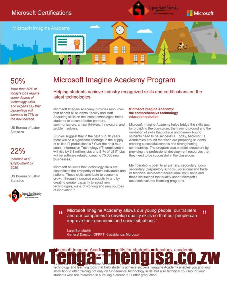Microsoft Academy Program