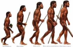 Perbedaan Homo Wajakensis dengan Homo Soloensis