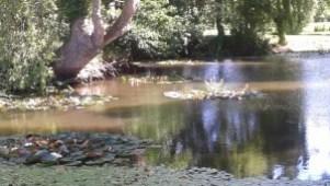 Le Jardin d'eau du poète-jardinier Gérard Guiot.